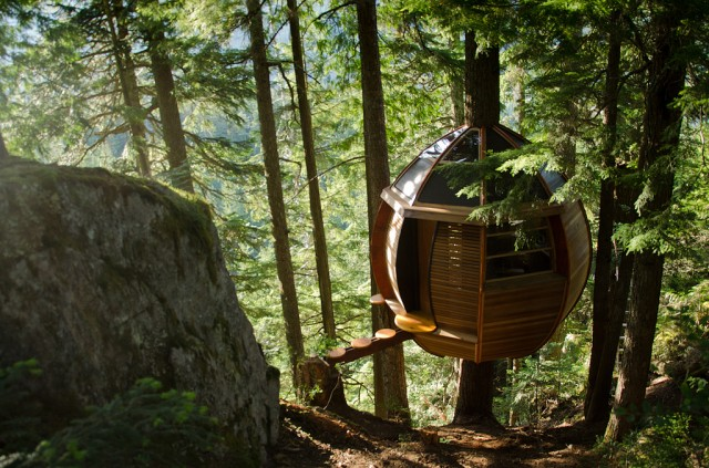 Hemloft - tree house
