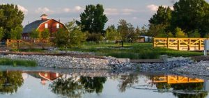 constructed wet lands serving as recreational areas