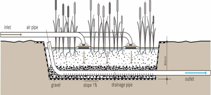 sectional diagram of a constructed wetland